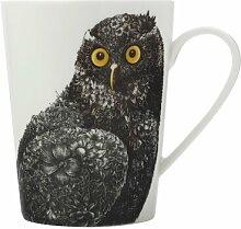 Becher Owl