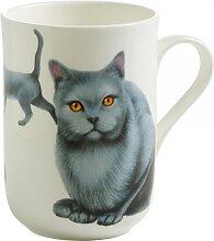 Becher, Tasse PETS CATS Katzen Karthäuser H. 10,5cm 340ml Maxwell & Williams (10,95 EUR / Stück)