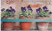 Bedruckte Fußmatte Sherrill Garten Living