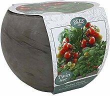 BEES Tomate & Basilikum Twin Anzucht-Set