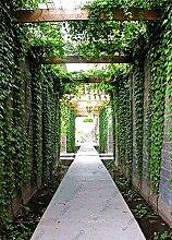 Beförderung! Sorten Pflanze Grün Gemüse Mint Samen Balkon Topf Peppermint Aromatische Pflanzensamen 100PCS