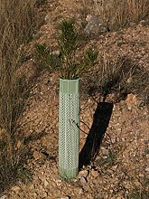 belüftet Baum Schutzdach 100Stück Standard grün 1,2m Pflanze Schutz Guard Röhren