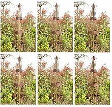 Benelando® 6 x Rankobelisk aus Weide - 120 cm