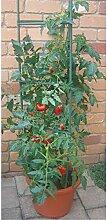 Benelando® Tomatenkäfig Rankhilfe Tomaten