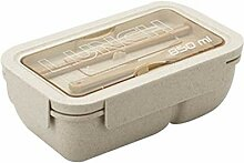 Bento Boxen Kreative Mikrowelle Lunchbox mit