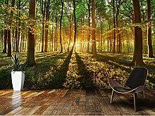 Benutzerdefinierte Fototapete Wald, Sonnenschein