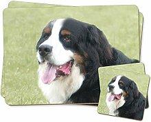Berner Sennenhund Zwillings Platzdeckchen und