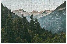 Bernice Winifred Nadelwald Berge Landschaft Reise