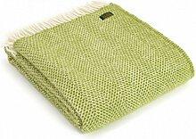 Bestseller-Tweedmill Kiwi Grün Wolle Beehive