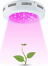BESTVA 300W Dual Chips Pflanzenlampe LED Grow Lampe Pflanzenlicht Wachstumslampe Vollspektrum für Treibhaus Zimmerpflanzen Hydrokultur Gemüse und Blumen