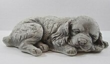 Beton Figur Hund Cocker Spaniel Welpe H 10 cm