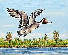 Betsy Drake Pintail Duck Wand-Außenleuchte