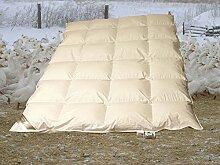 Betten Hofmann White Sibiria Schneegänse 8cm Hochsteg Winter Daunendecke Daunenbett 6x7 240x220