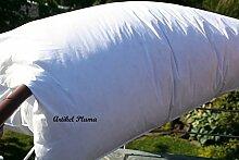 Bettenkiste - Pluma Standard - Ballonbett,