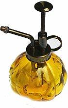 Bewässern sie wasser-dosen/der kessel/wasserkocher/blumentopf/sprayer/bewässerung/retro-glas-dosen-A