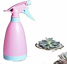 Bewässerung/teekanne/spray wasserkocher/handdruck gießkanne/spray flasche/wasserkocher-C