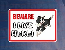 Beware I Live Here–Border Collie House/Home