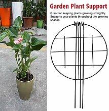 BGY Pflanze Unterstützung Garten Pfähle,