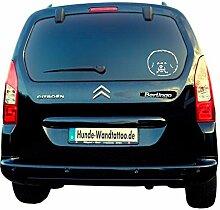 Bichon a Poil Frisé Autoaufkleber ATK0187 Auto Aufkleber Wohnmobil Wohnwagen von Amberdog® - Das ORIGINAL (60x40cm, schwarz)