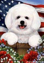 Bichon Frise Hund (Korb)–Tamara Burnett