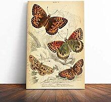BIG Box Art Leinwandbild Vintage Schmetterling auf