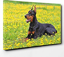 BIG Box Art Leinwanddruck mit Doberman-Motiv,