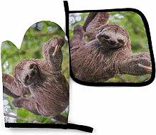 Bikofhd Faultier hängen Baum im Dschungel Wald O