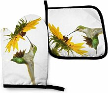 Bikofhd Kolibri schweben bei gelber Sonnenblume