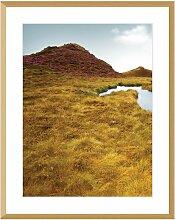 Bild Grassy Field I 40x50cm, 40x50cm