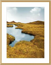 Bild Grassy Field II 40x50cm, 40x50cm