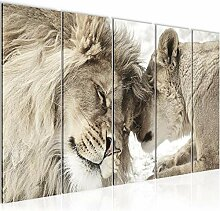 Bild Löwen Liebe Kunstdruck Vlies Leinwandbild