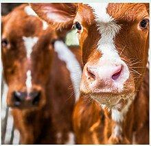 Bild mit Rahmen Sander Van Laar - Spring cows 1 - Digitaldruck - Holz silber, 90 x 93.6cm - Premiumqualität - TIERE - MADE IN GERMANY - ART-GALERIE-SHOPde