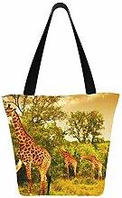 Bild Südafrikanische Giraffen Große Familie 11