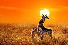 BILD TAPETE PAPERMOON, Giraffen gegen