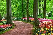 BILD TAPETE PAPERMOON, Tulpen Frühlingslandschaft