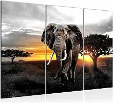 Bilder Afrika Elefant Wandbild 120 x 80 cm - 3