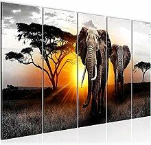 Bilder Afrika Elefant Wandbild 150 x 60 cm Vlies -