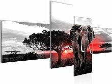 Bilder Afrika Elefant Wandbild 200 x 100 cm Vlies