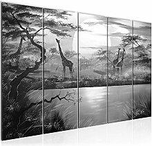Bilder Afrika Giraffe Wandbild 200 x 80 cm - 5