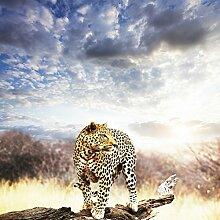 Bilderdepot24 Fototapete selbstklebend Leopard -