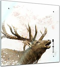 Bilderdepot24 Memoboard 40 x 40 cm, Tiere - Hirsch