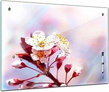 Bilderdepot24 Memoboard 60 x 40 cm, Pflanzen -