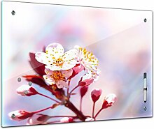 Bilderdepot24 Memoboard 80 x 60 cm, Pflanzen -