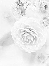 Bilderdepot24 Vlies Fototapete - Aquarell - Rosa