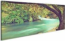 bilderfelix® Acrylglasbild Fluss Glasbild