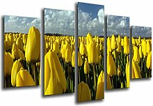 Bilderrahmen Fotogalerie mehrfarbig 165 x 62 cm