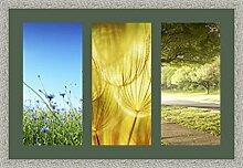 Bilderrahmen multivues Vert foret 3 Foto(s) 25x50