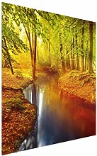 Bilderwelten Glasbild - Herbstwald - Quadrat 1:1 -