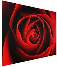 Bilderwelten Glasbild - Liebliche Rose - Quer 3:4