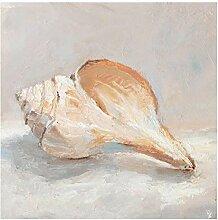 Bilderwelten Glasbild Moderne Kunst Muschel-Studie